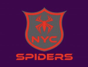 NYC Spiders